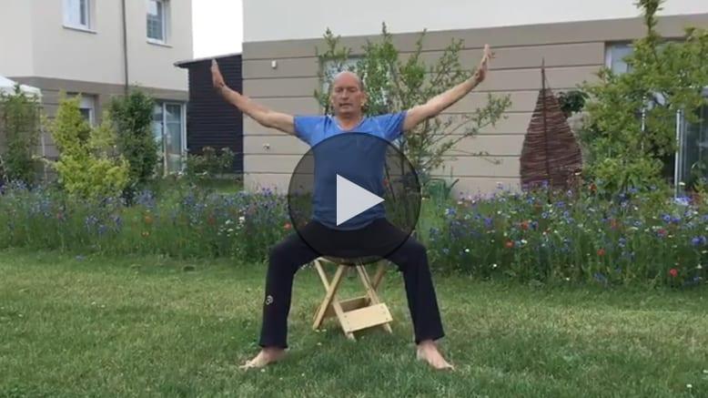 Gyrokinesis Video